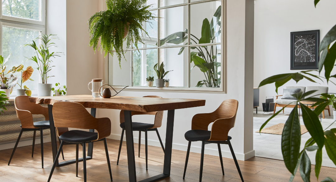 Dining room with lots of plants